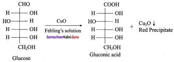 Samacheer Kalvi 12th Chemistry Solutions Chapter 14 Biomolecules-43
