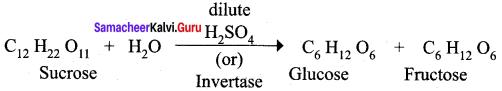 Samacheer Kalvi 12th Chemistry Solutions Chapter 14 Biomolecules-45