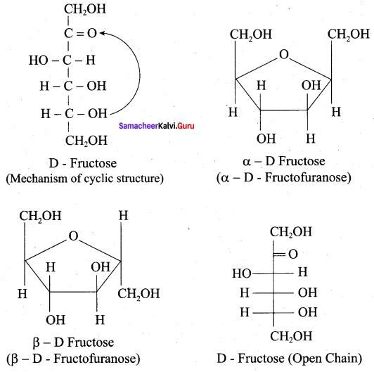 Samacheer Kalvi 12th Chemistry Solutions Chapter 14 Biomolecules-48