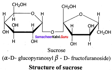 Samacheer Kalvi 12th Chemistry Solutions Chapter 14 Biomolecules-49