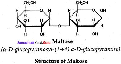 Samacheer Kalvi 12th Chemistry Solutions Chapter 14 Biomolecules-51