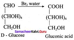 Samacheer Kalvi 12th Chemistry Solutions Chapter 14 Biomolecules-56