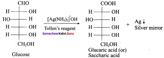 Samacheer Kalvi 12th Chemistry Solutions Chapter 14 Biomolecules-63
