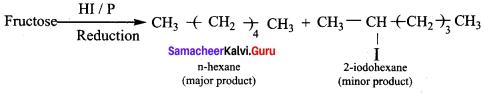 Samacheer Kalvi 12th Chemistry Solutions Chapter 14 Biomolecules-67