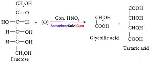 Samacheer Kalvi 12th Chemistry Solutions Chapter 14 Biomolecules-69