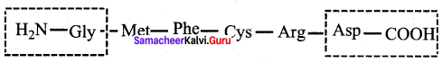 Samacheer Kalvi 12th Chemistry Solutions Chapter 14 Biomolecules-74