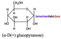 Samacheer Kalvi 12th Chemistry Solutions Chapter 14 Biomolecules-9