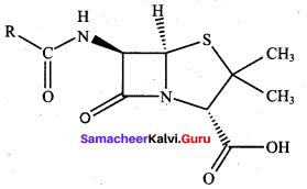 Samacheer Kalvi 12th Chemistry Solutions Chapter 15 Chemistry in Everyday Life-30