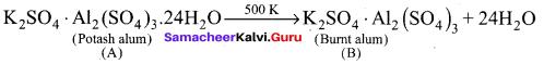 Samacheer Kalvi 12th Chemistry Solutions Chapter 2 p-Block Elements - I img-20