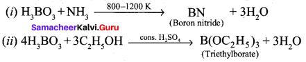 Samacheer Kalvi 12th Chemistry Solutions Chapter 2 p-Block Elements - I img-25