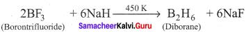 Chemistry Class 12 Samacheer Kalvi Chapter 2 P-Block Elements - I