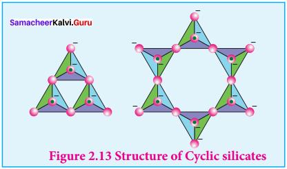Samacheer Kalvi 12th Chemistry Solutions Chapter 2 p-Block Elements - I img-64