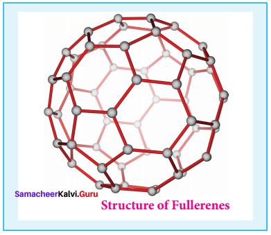 12th Chemistry Solutions Samacheer Kalvi Chapter 2 P-Block Elements - I