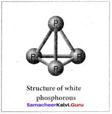 Samacheer Kalvi 12th Chemistry Solutions Chapter 3 p-Block Elements - II img-17