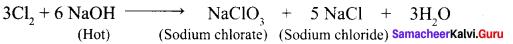 12th Chemistry 3rd Lesson Book Back Answers P-Block Elements - II Samacheer Kalvi