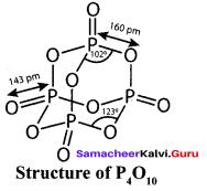 Samacheer Kalvi 12th Chemistry Solutions Chapter 3 p-Block Elements - II img-46