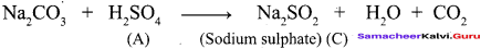 Samacheer Kalvi 12th Chemistry Solutions Chapter 3 p-Block Elements - II imh-66