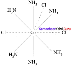 12th Chemistry Evaluate Yourself Answers Samacheer Kalvi Chapter 5 Coordination Chemistry