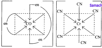 Samacheer Kalvi 12th Chemistry Solutions Chapter 5 Coordination Chemistry-24