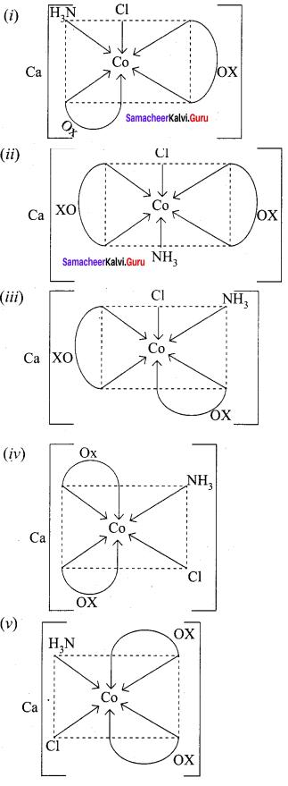 Samacheer Kalvi 12th Chemistry Solutions Chapter 5 Coordination Chemistry-29