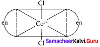 12th Chemistry Lesson 5 Book Back Answers Samacheer Kalvi Coordination Chemistry