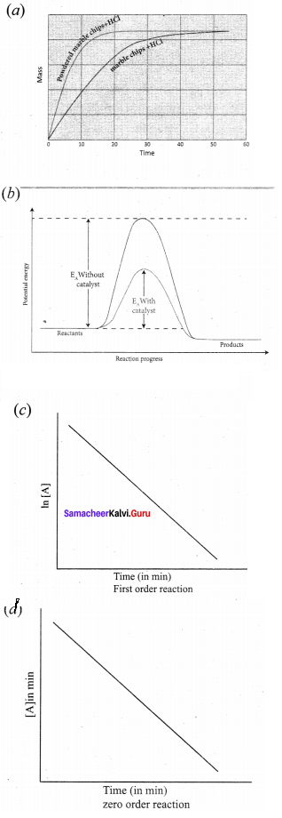 Samacheer Kalvi 12th Chemistry Solutions Chapter 7 Chemical Kinetics-54