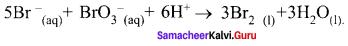 Samacheer Kalvi 12th Chemistry Solutions Chapter 7 Chemical Kinetics-64