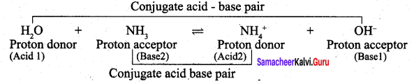 Samacheer Kalvi 12th Chemistry Solutions Chapter 8 Ionic Equilibrium-118