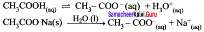 Samacheer Kalvi 12th Chemistry Solutions Chapter 8 Ionic Equilibrium-130