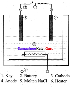 Samacheer Kalvi 12th Chemistry Solutions Chapter 9 Electro Chemistry-10