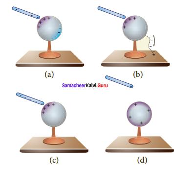 Samacheer Kalvi 12th Physics Solutions Chapter 1 Electrostatics-69