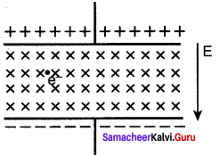 Samacheer Kalvi Guru 12th Physics Solutions Chapter 3 Magnetism And Magnetic Effects Of Electric Current