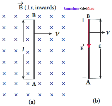 Samacheer Kalvi 12th Physics Solutions Chapter 4 Electromagnetic Induction and Alternating Current-15