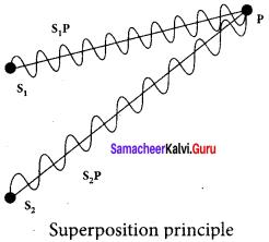 Samacheer Kalvi 12th Physics Solutions Chapter 6 Optics-31