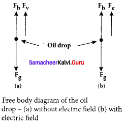 Samacheer Kalvi 12th Physics Solutions Chapter 8 Atomic and Nuclear Physics-9