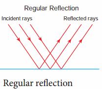 Light 8th Standard Samacheer Kalvi Science Solutions Term 1 Chapter 3 Light