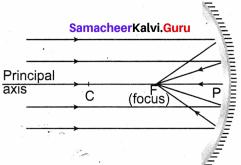 8th Standard Light Lesson Samacheer Kalvi Term 1 Chapter 3