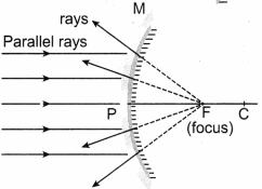 Samacheer Kalvi 8th Science Solutions Term 1 Chapter 3 Light 23