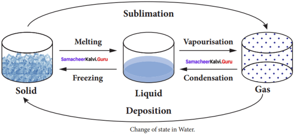 Samacheer Kalvi 8th Science Solution Term 2 Chapter 1 Heat