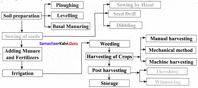 8th Science Crop Production And Management Samacheer Kalvi Solutions Term 3 Chapter 7