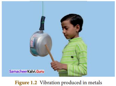Samacheer Kalvi.Guru 8th Science Solutions Term 3 Chapter 1 Sound