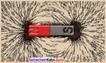 Samacheer Kalvi 8th Science Book Solutions Term 3 Chapter 2 Magnetism