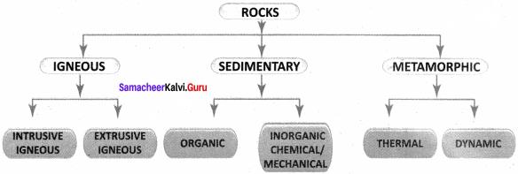 Samacheer Kalvi Guru 8th Social Science Geography Solutions Term 1 Chapter 1 Rock And Soil