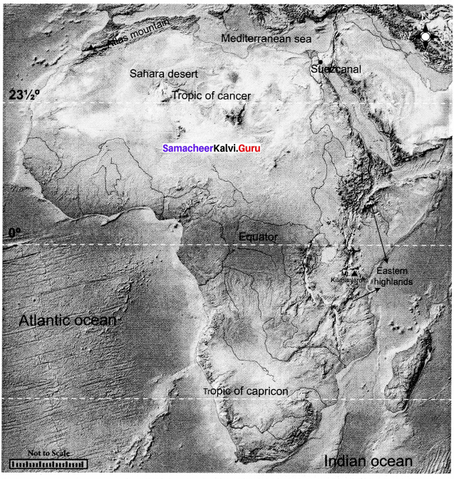 Samacheer Kalvi 8th Social Science Geography Term 3 Chapter 2 Exploring Continents (Africa, Australia and Antarctica) img-1