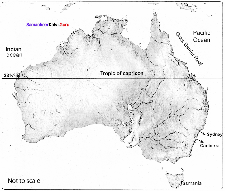 Samacheer Kalvi 8th Social Science Geography Term 3 Chapter 2 Exploring Continents (Africa, Australia and Antarctica) img-2