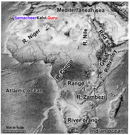 Samacheer Kalvi 8th Social Science Geography Term 3 Chapter 2 Exploring Continents (Africa, Australia and Antarctica) img-6