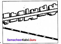 Samacheer Kalvi Guru 9th Social Science Geography Solutions Chapter 6 Man And Environment