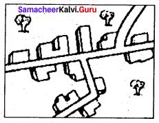 9th Samacheer Kalvi Social Science Geography Solutions Chapter 6 Man And Environment