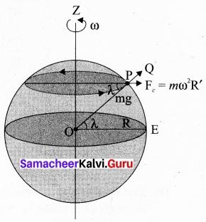 Tamil Nadu 11th Physics Model Question Paper 2 English Medium 14