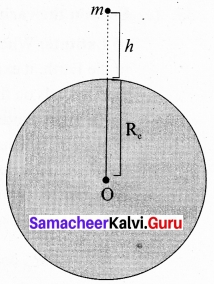 Tamil Nadu 11th Physics Model Question Paper 2 English Medium 17